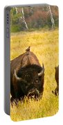 Familial Grazing Portable Battery Charger