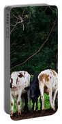 Farm Cattle Portable Battery Charger