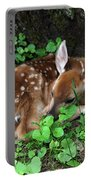 Fawn 2292 Portable Battery Charger
