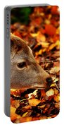 Fawn In Autumn Portable Battery Charger