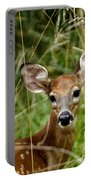 Fawn Portrait Portable Battery Charger