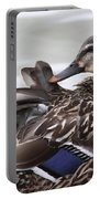 Feathers In Place Portable Battery Charger