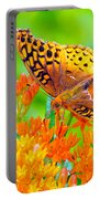 Feeding Butterfly Portable Battery Charger