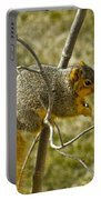 Feeding Tree Squirrel Portable Battery Charger
