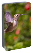 Female Allen's Hummingbird Portable Battery Charger