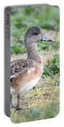 Female American Wigeon  Portable Battery Charger