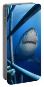 Female Great White And Underwater Portable Battery Charger