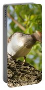 Female Hooded Merganser Portable Battery Charger