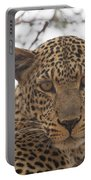 Female Leopard Close-up Portable Battery Charger