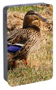 Female Mallard On A River Bank In Alaska Portable Battery Charger