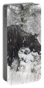 Female Moose In Snowy Forest, Gaspesie Portable Battery Charger