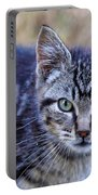 Feral Kitten Portable Battery Charger