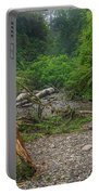 Fern Canyon Trunk Portable Battery Charger