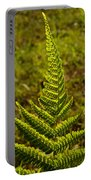 Fern Frond And Sporangia 1 Portable Battery Charger