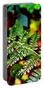 Fern I Portable Battery Charger