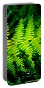 Fern II Portable Battery Charger