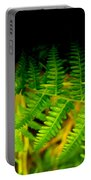 Fern IIi Portable Battery Charger