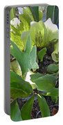 Fern With Blue Bucket Portable Battery Charger
