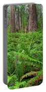 Ferns And Redwoods Portable Battery Charger
