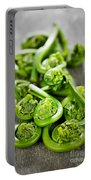 Fiddleheads Portable Battery Charger