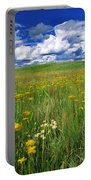 Field Of Flowers, Grasslands National Portable Battery Charger