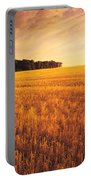 Field Of Grain Stubble Near St Portable Battery Charger