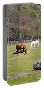 Field Of Horses Portable Battery Charger