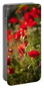 Fields Of Fire Portable Battery Charger