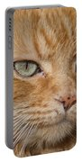 Fierce Warrior Kitty Portable Battery Charger