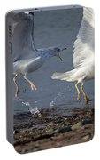 Fighting Gulls Portable Battery Charger