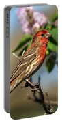 Finch In Lilac Bush Portable Battery Charger
