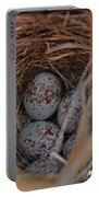Finch Nest With Eggs  Portable Battery Charger