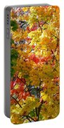 Fine Fall Foliage Portable Battery Charger