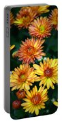 First Fall Mums Portable Battery Charger