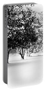 First Snow Portable Battery Charger