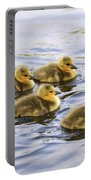 Five Goslings In The Water Portable Battery Charger