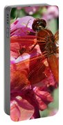 Flame Skimmer Dragonfly Portable Battery Charger