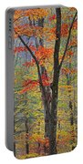 Flaming Fall Foliage Portable Battery Charger