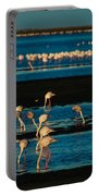 Flamingo Gathering Portable Battery Charger