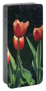 Flared Red Yellow Tulips Portable Battery Charger