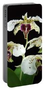 Flock Of Dendrobium Portable Battery Charger