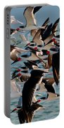 Flock Of Terns Portable Battery Charger