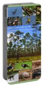 Florida Wildlife Photo Collage Portable Battery Charger