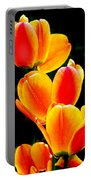 Flower 20 Portable Battery Charger