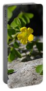 Flower And Dancing Clover Portable Battery Charger