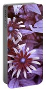 Flower Rudbeckia Fulgida In Uv Light Portable Battery Charger by Ted Kinsman