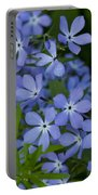 Flower Wild Blue Phlox 1 B Portable Battery Charger
