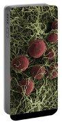 Flowers, Digital Streak Image Portable Battery Charger