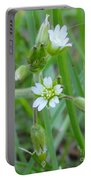 Flowers Of The Grass Portable Battery Charger