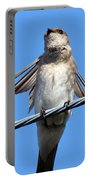 Fluttering Swallow Portable Battery Charger